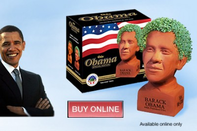 Get Your Obama Chia