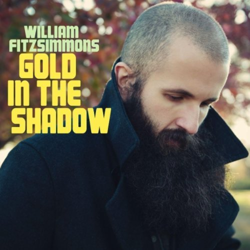 Album Review: William Fitzsimmons-Gold in the Shadow