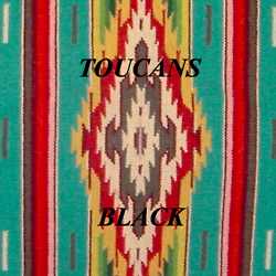 "Album Debut-Toucans ""Black"""