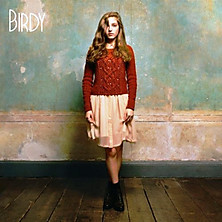 Birdy Covers Ground